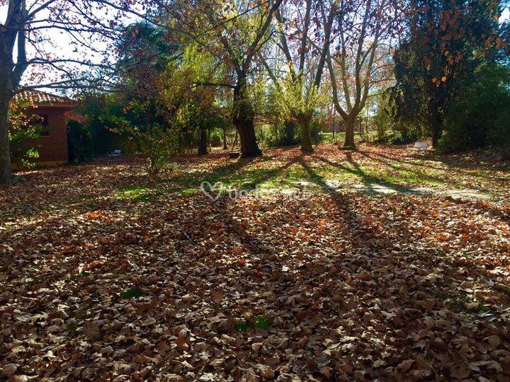Finca en otoño