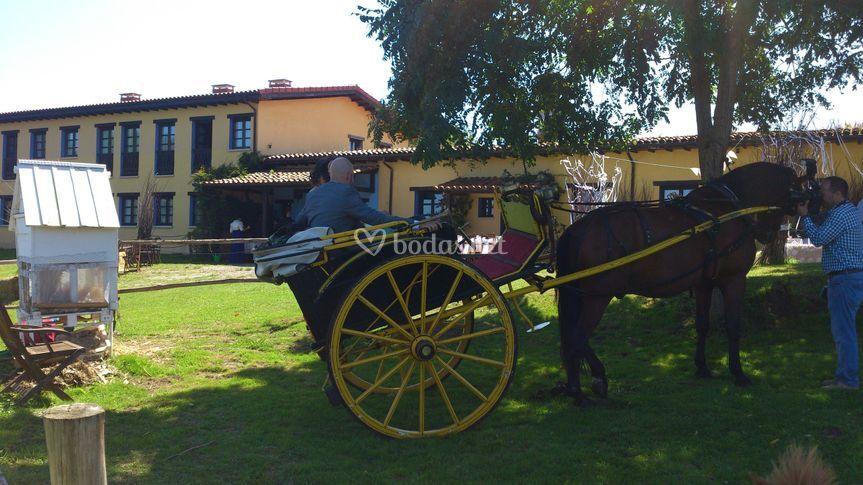 Paseo en carruaje de caballo.