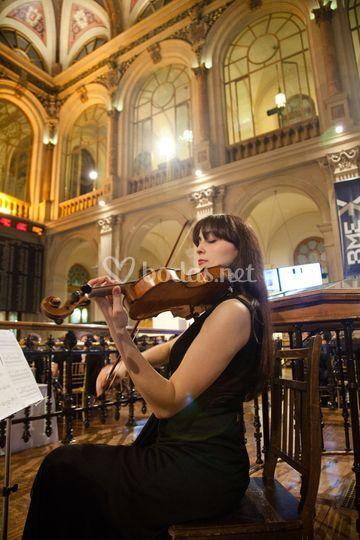 Violinista evento