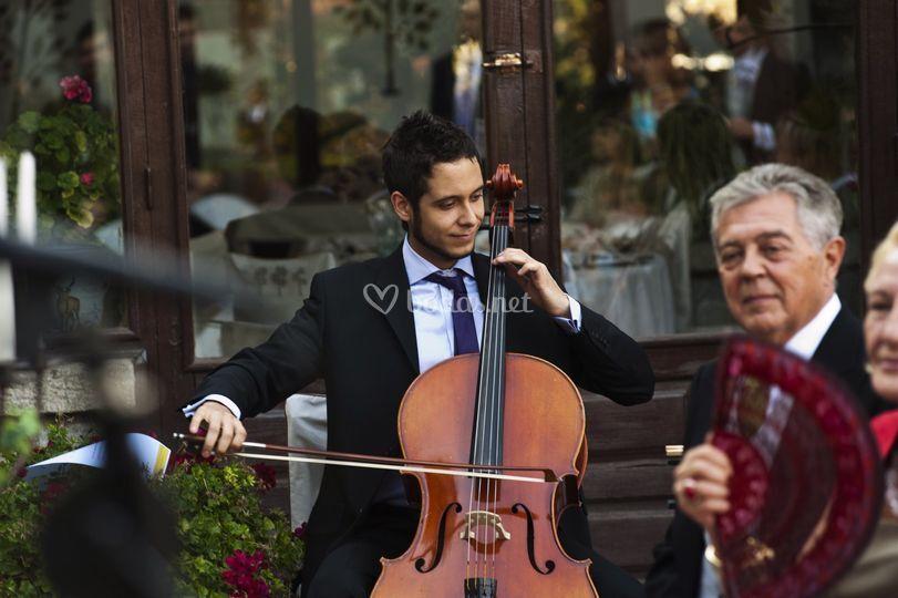 Nuestro violoncellista