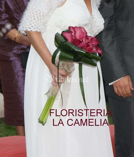 La Camelia Floristas