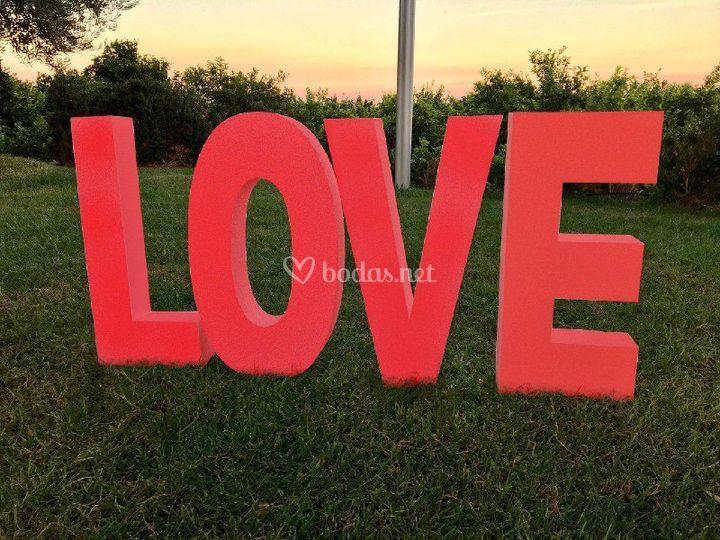 Love pintado