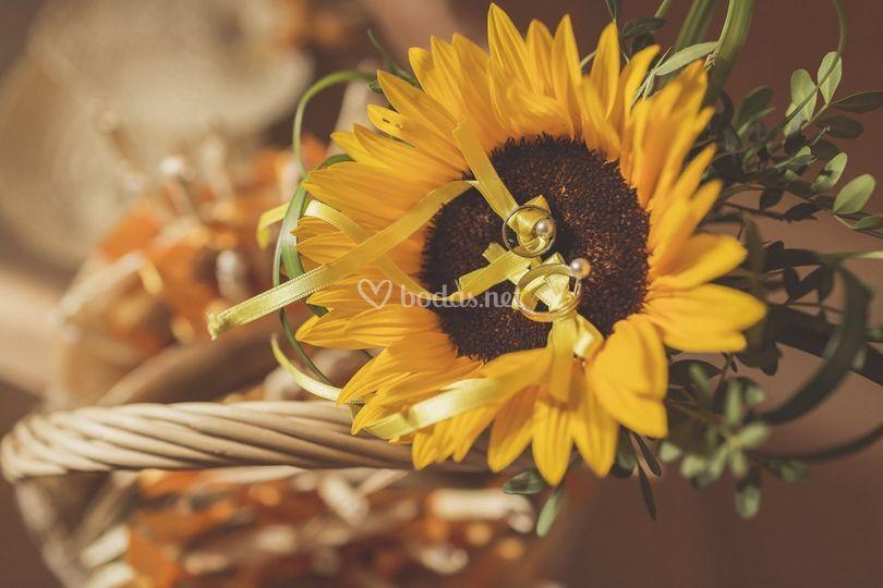 Detalle anillos boda