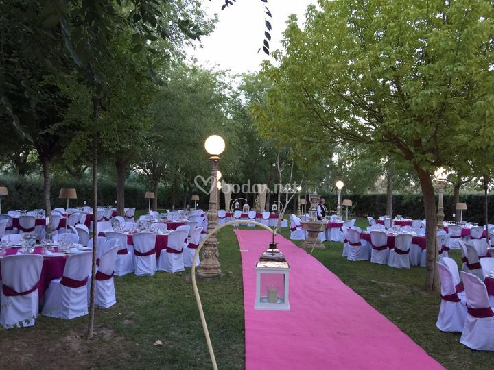 Nova Eventos en ceremonias civiles