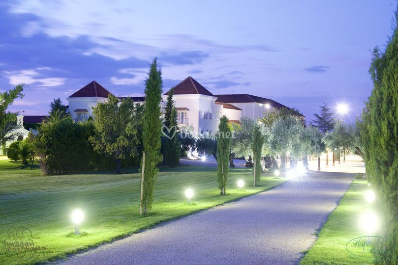 Paseo nocturno  por jardines de Bodegas y Viñedos Casa del Valle