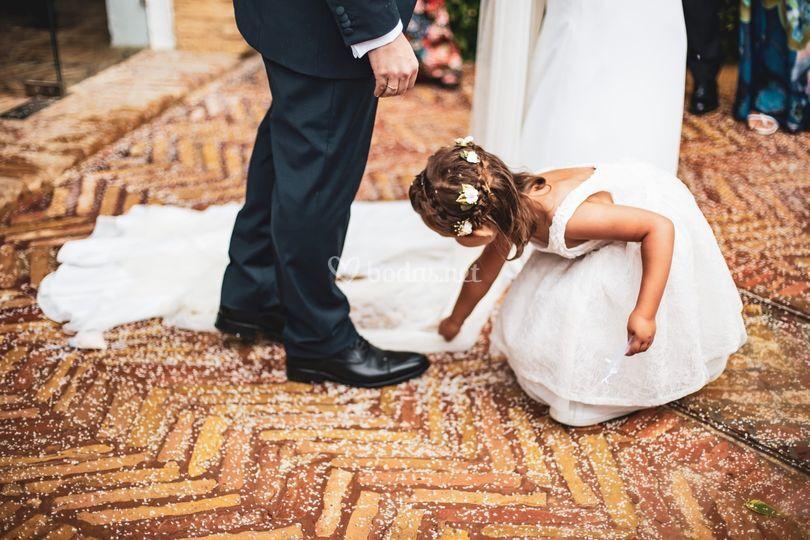 Ceremoia