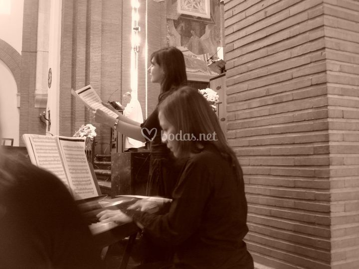 Ars Musicis