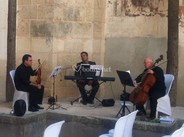 Trío cello, violín y piano para boda civil