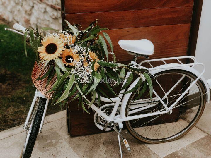 Bicicleta - Girasoles