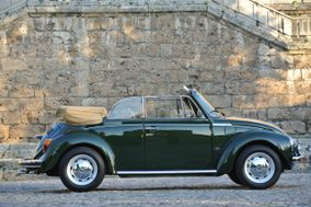 Green Beatle/Mini wedding