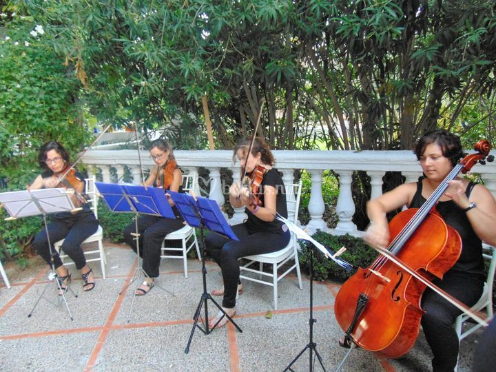 Música en directo ceremonias