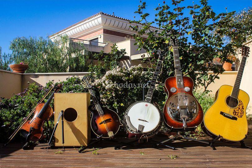 Nuestros instrumentos