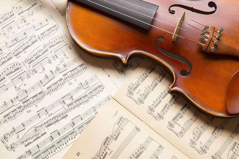 Violines italianos excelentes