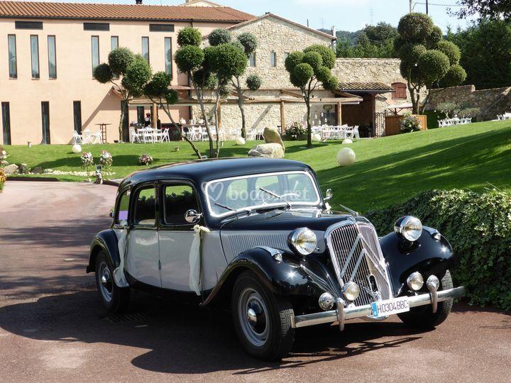 Citroën 11 Limousine