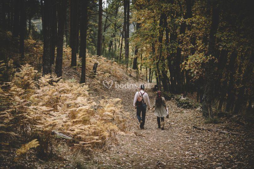 Viajes de pareja perfectos