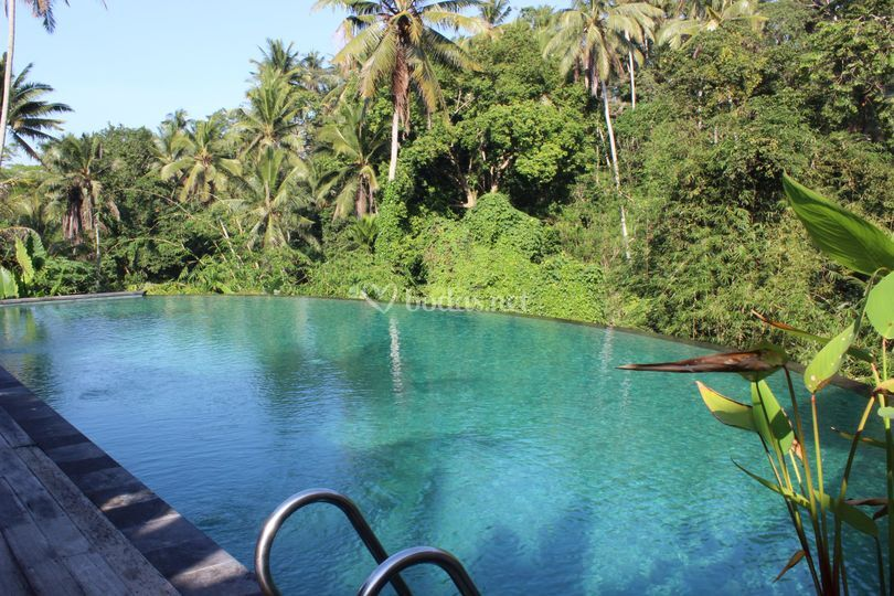 Ubud, el corazón verde de Bali