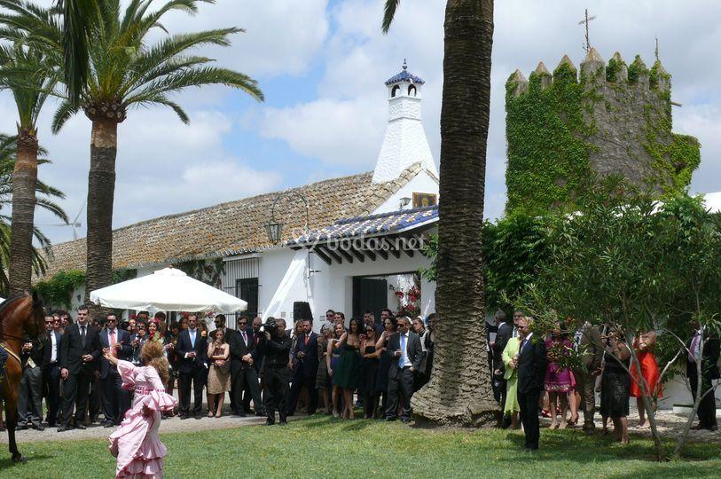 Espectáculo ecuestre con flamenca