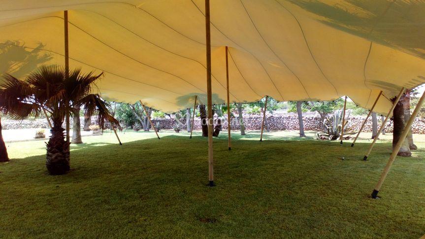 Vista interior Jaima 15x20