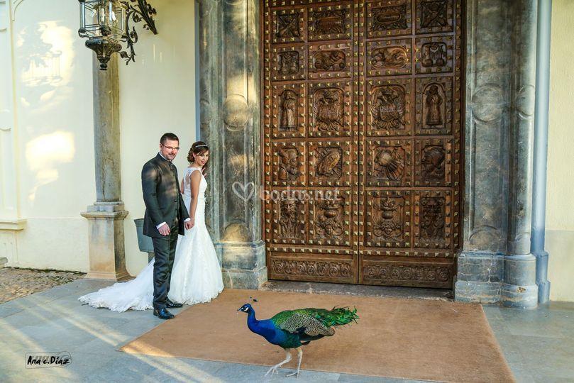 En Granada, bello lugar