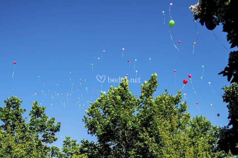 Globos de helio para eventos.