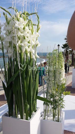 Flores blanco.