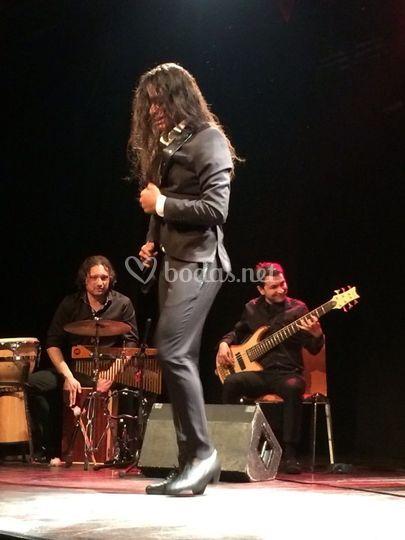 Bailaor flamenco