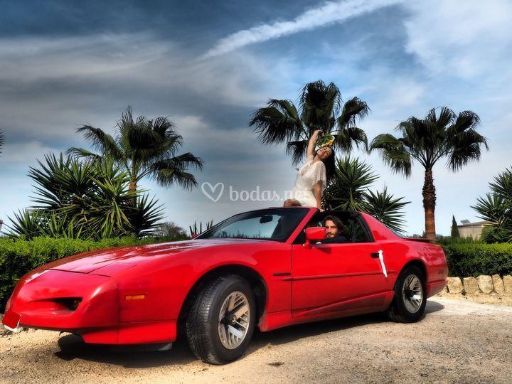 Pontiac Firebird 1.991