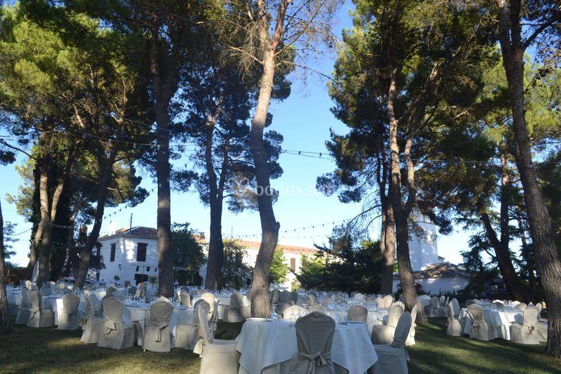 Banquete Finca Las Beatas
