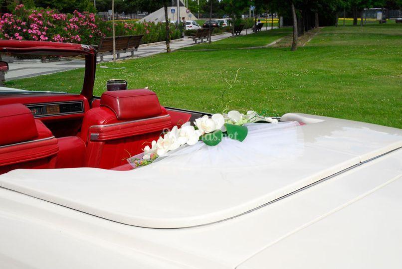 Cadillac Eldorado ecológico