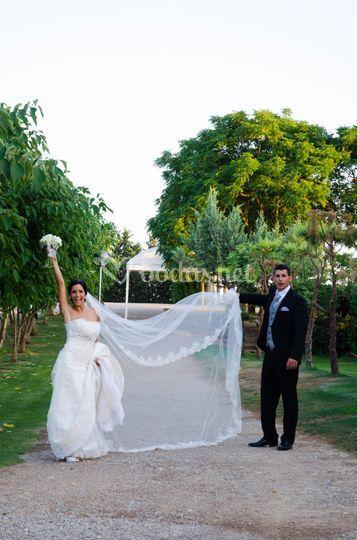 Fruits & Weddings