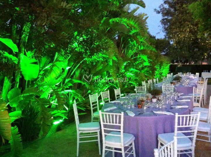 Iluminación proyec jardines
