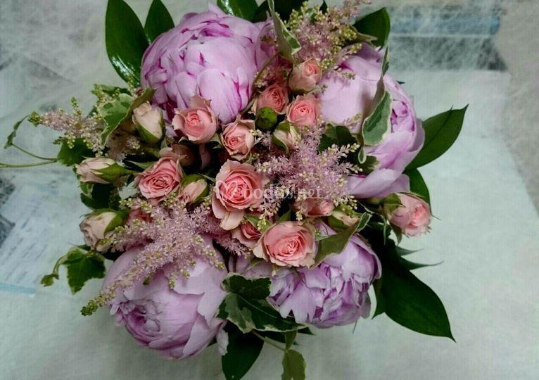 Parodias y rosas mini