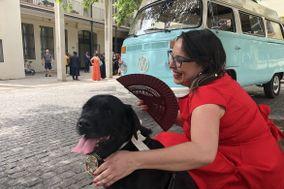 Kikao - Cuidadora de Mascotas