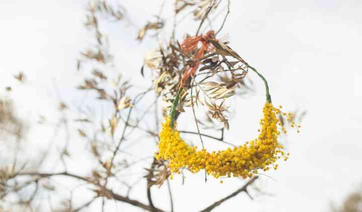 Mimosa Flower Crown
