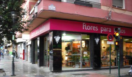 Flores para todos 1