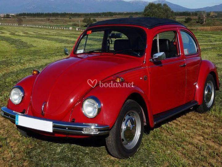 VW Escarabajo - Techo Sunroof