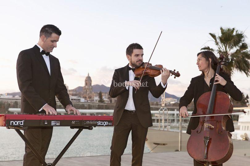 Trío: violín, chelo, y piano