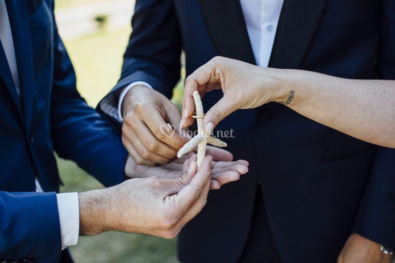 Entrega de anillos