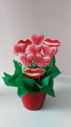 Planta San Valentín