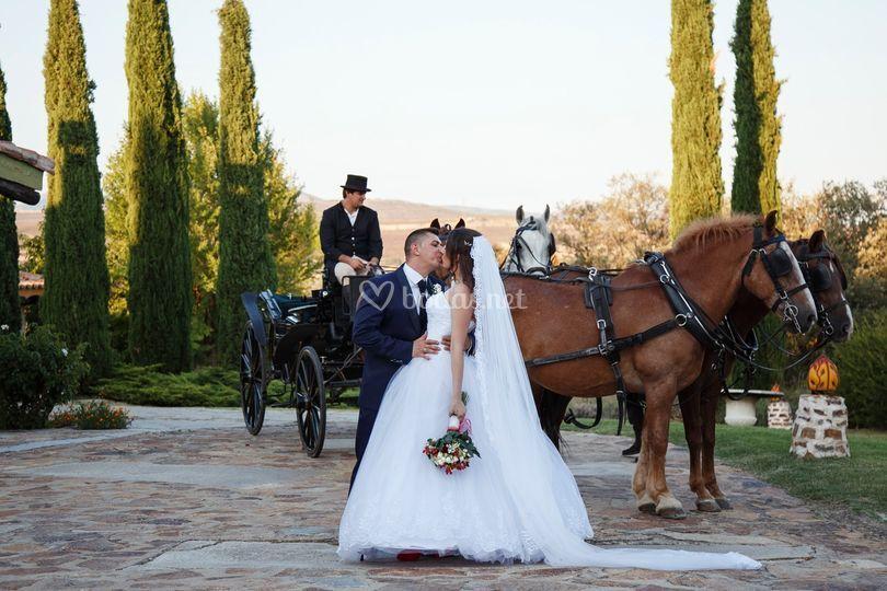 AP Weddings