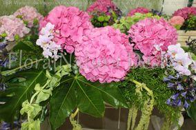 Floral Natura Design