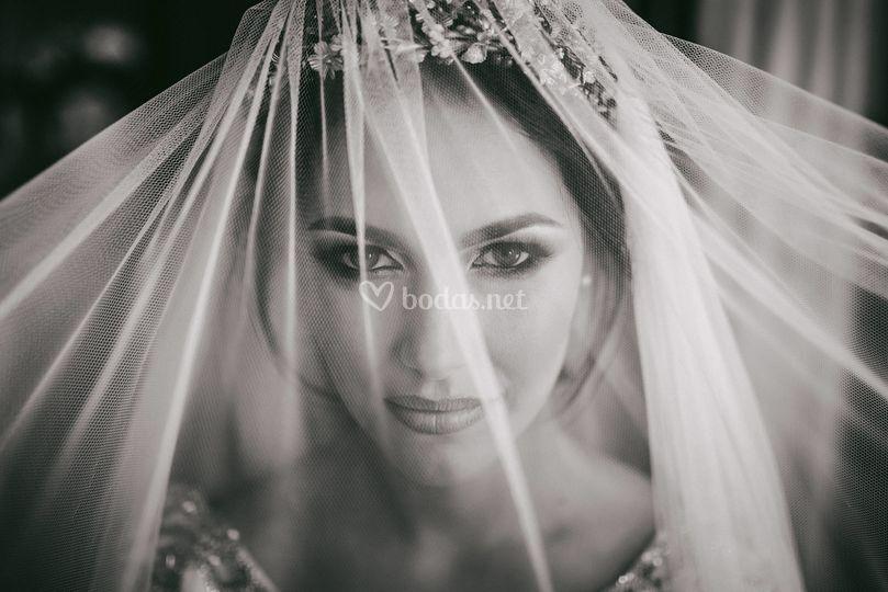 Amor Loco Wedding Planner