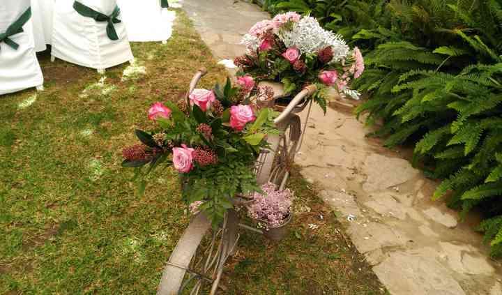 Bicicleta flores naturales