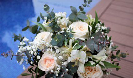Orquidia Flors 1