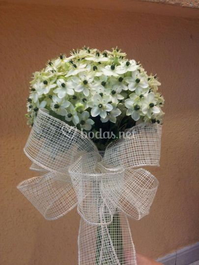 Bouquet de ornitogalum