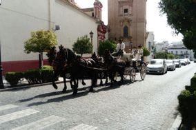 Picadero Curro Jiménez - Coche de caballos
