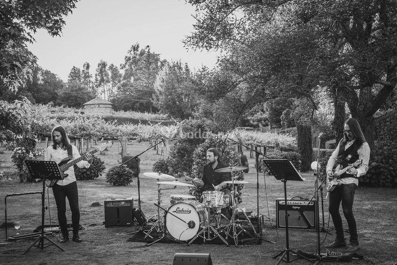 El grupo tocando al aire libre