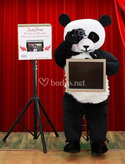 Panda Fotomatón