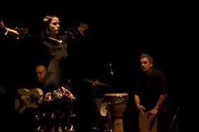 Al Aire Flamenco