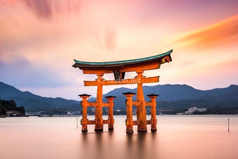 Japón esencial con Hakone